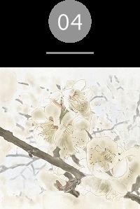 エッセンシャルミスト;センスオブバランス 梅の花エキス