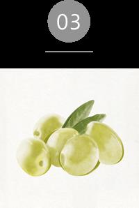 オイル;ライトアンドモア 植物性スクワラン
