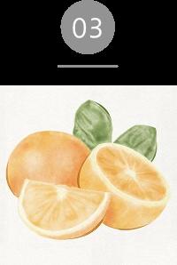 クレンジングウォーター;ビークリーン、ビーモイスト オレンジエキス